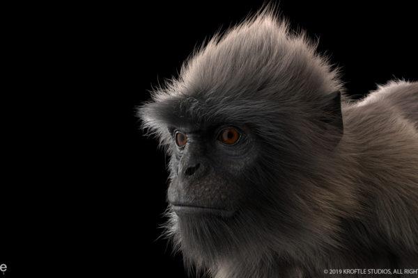monkey_kroftle_02