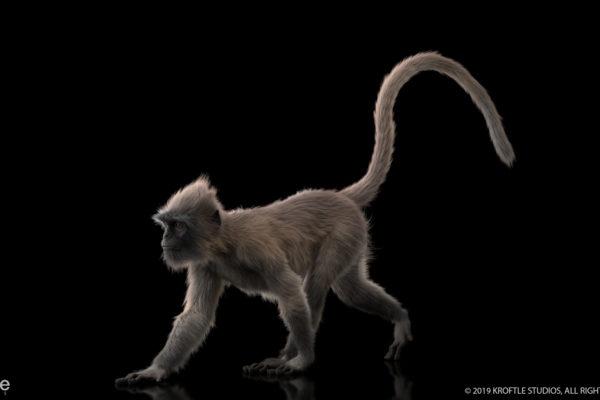 monkey_kroftle_04